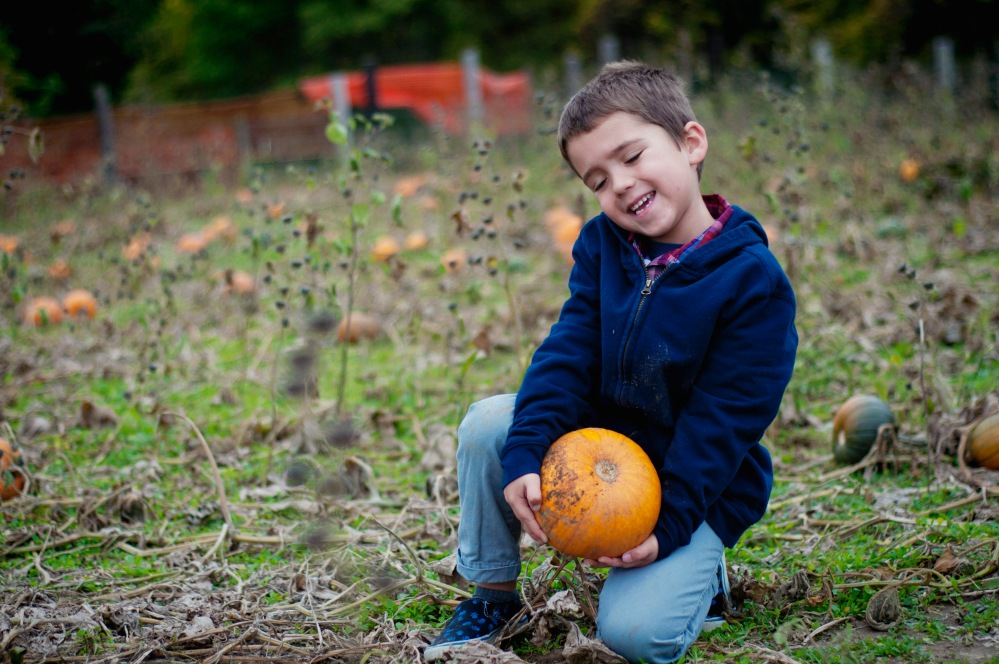 {Pick a Pumpkin, I've got Two} by Lacy Marie Photography in Omaha NE