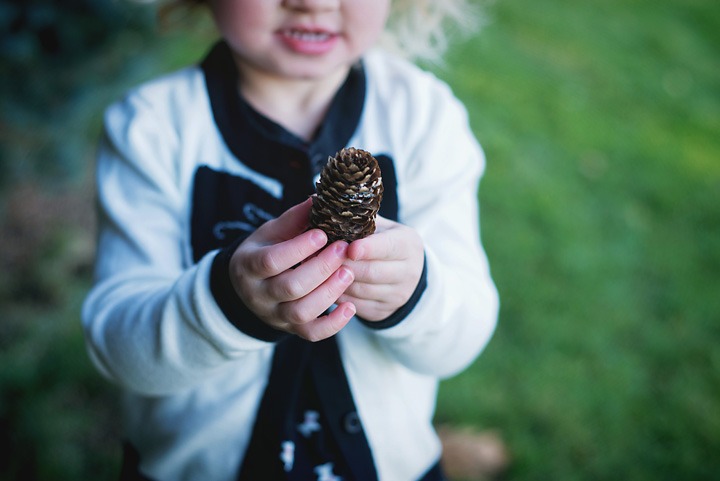 {Josie and Pineapples (aka, pinecones)} by Lacy Marie Photography in Omaha NE