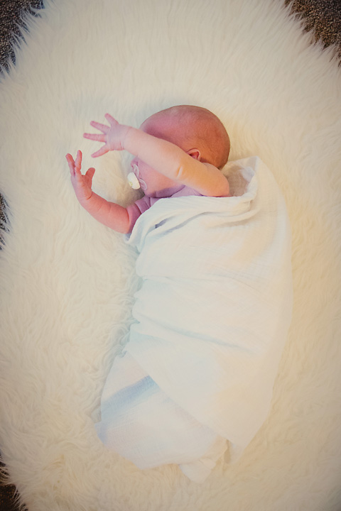 {Baby Bunddle} - Newborn Session by Lacy Marie Photography in Omaha NE