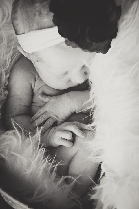 {a new sister} Newborn and kid session. by Lacy Marie Photography in Omaha NE